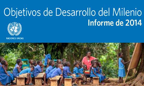 ODM 2014 informe ONU